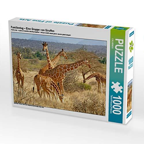 CALVENDO Puzzle Familientag – Eine Gruppe von Giraffen 1000 Teile Lege-Größe 64 x 48 cm Foto-Puzzle Bild Verlag