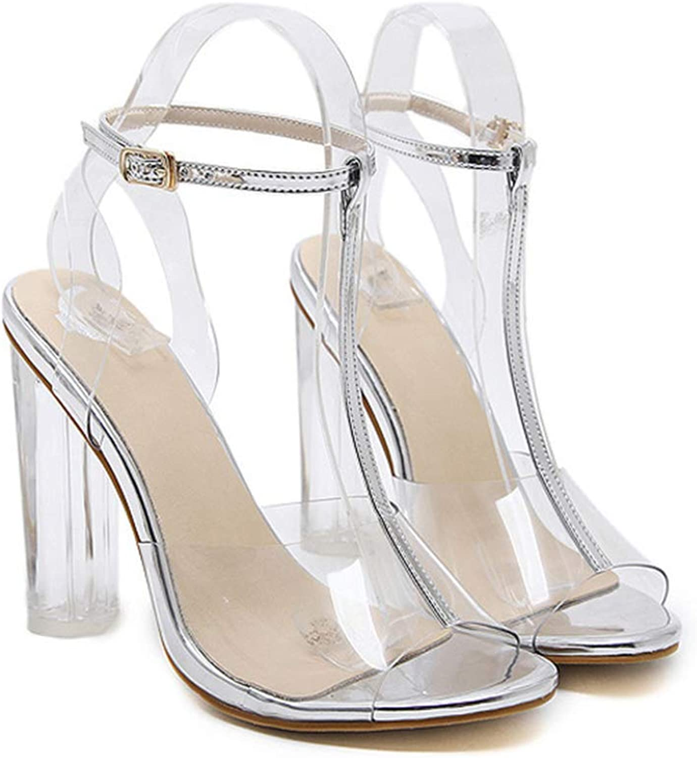 Women's Fashion Sexy Clear Strappy Block Chunky High Heel Open Peep Toe Sandal,Silver,7MUS