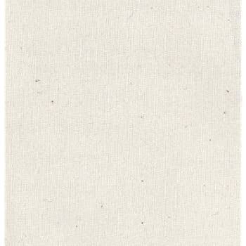 Amy Butler 100% Cotton Muslin Natural Fabric By The Yard