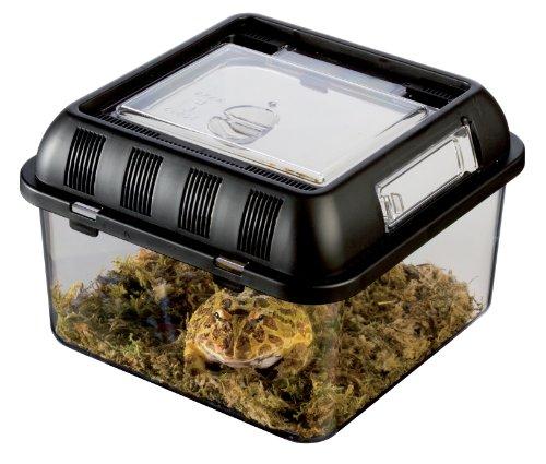 Exo Terra Brutbox S – Stapelbares Zuchtterrarium