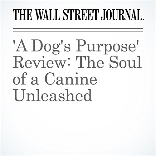 'A Dog's Purpose' Review: The Soul of a Canine Unleashed copertina