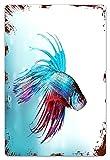 MIFSOIAVV Vendimia Cartel de Chapa metálica Peces Betta luchadores siameses nadando en un mar agresivo de acuario Placa Póster,Decoraciones de de Pared de Hierro Retro para Café Bar Pub Casa 20x30cm
