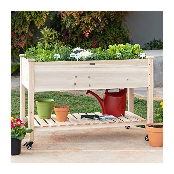 Best Choice Products Raised Garden Bed 48x24x32-inch Mobile Elevated Wood Planter w/Lockable Wheels, Storage Shelf… 6 EASY MOBILITY: Built with a set of locking wheels to move the planter from place to place and capture the right amounts of sun and shade ERGONOMIC STRUCTURE: Stands 32 inches tall, making it perfect for those who struggle to bend down or lean over while gardening GARDEN BED LINER: Separates wood from the soil, keeping planter in excellent condition and preventing weeds and pests from interfering with plant growth