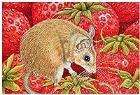 DMFNGJSD 数字油絵 フレーム付き、数字キット塗り絵 手塗り DIY絵-マウスとイチゴ 40X50cm