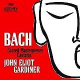 Sacred Masterpieces Cantatas (Box22Cd)(Christmas Oratorio,St.Matthew Passion..)