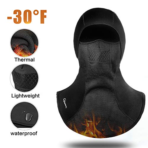 RIGWARL Thermal Waterproof Face Mask