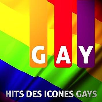 Hits Des Icônes Gays (38 Titres)