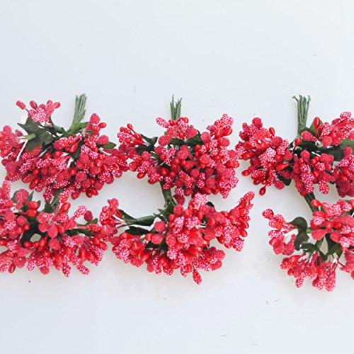 C.X.Y. 144 Bacche (Set 12 Fiori da 12 Pistilli Bacche) bomboniera Confezione Scatola Fiore Fai da Te (Rosso)