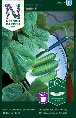 Minigurken Samen Baby F1 - Nelson Garden Gemüsesamen - Snackgurken Samen Saatgut (5 Stück) (Einzelpackung)