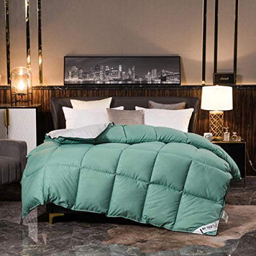 CHOU DAN Down duvet 95 white goose down winter quilt duck down quilt single spring and autumn quilt double thickened to keep warm-200X230cm 4000g_Green gray