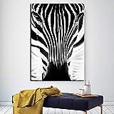 Blanco y negro jirafa cebra animal cartel y grabado...