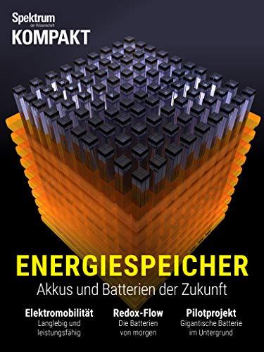 Spektrum Kompakt - Energiespeicher: Akkus und Batterien der Zukunft