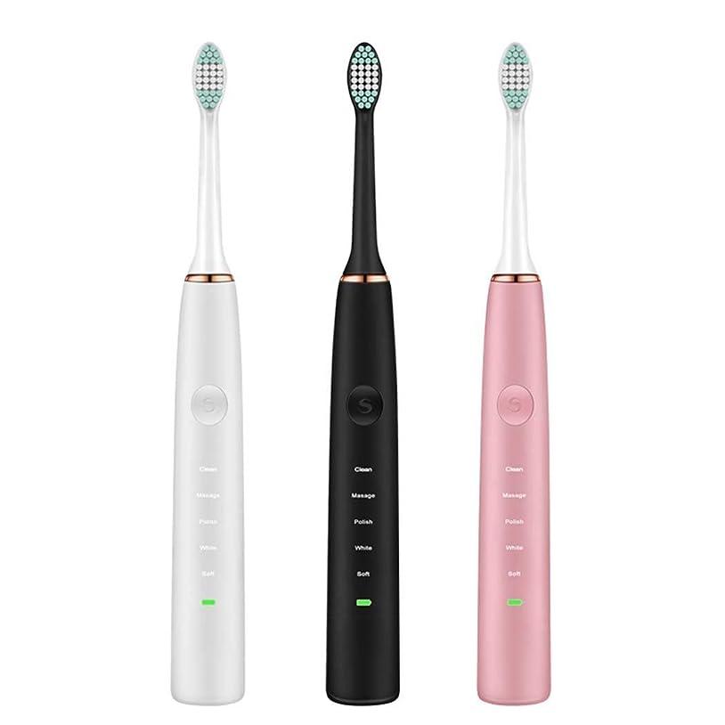 占めるジム圧倒的電動歯ブラシ、多機能電動歯ブラシ、充電式超音波振動歯ブラシ、USB充電式、5つのブラッシングモード(カラー:ピンク)