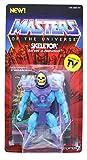 SUPER7 Masters of The Universe Vintage Collection Action Figure Skeletor 14 cm...