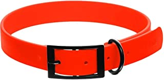 Dogline Biothane Waterproof Dog Collar Strong Coated Nylon Webbing with Black Hardware Odor- Proof for Easy Care Easy to C...