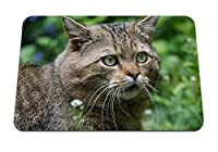 26cmx21cm マウスパッド (野生の猫の顔の目) パターンカスタムの マウスパッド