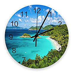 FunDecorArt Large Round Wooden Wall Clocks 12 Inch, Green Forest Blue Sea Rustic Silent & Non-Ticking Home/Office/Kitchen Decor Wall Clock Trunk Bay Saint John Virgin Islands