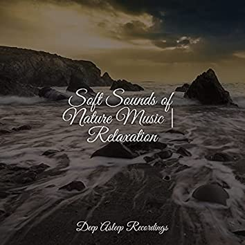 Soft Sounds of Nature Music | Relaxation