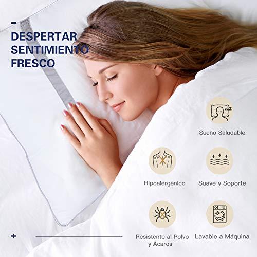 BedStory Pack de 2 almohadas antiácaros - 5