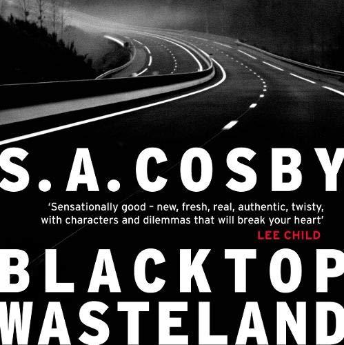 Blacktop Wasteland cover art