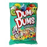 Dum-Dums (1) bag Tropical Assorted Flavors Lollipop Candy - Free of Major Allergens 3.5 oz