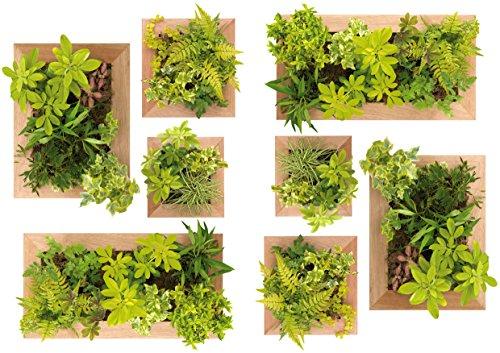 Plage Decoración Adhesiva Jardín Vertical, Vinilo, Verde, 21x3x29.6 cm