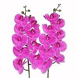 JAROWN 2 orquídeas artificiales de 9 cabezas de 96 cm, ramas de 96 cm, color rojo