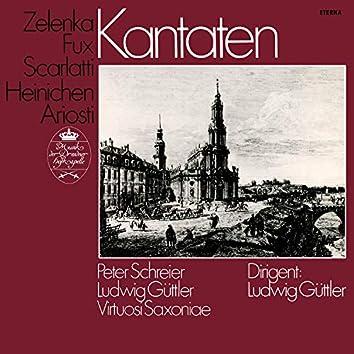Zelenka, Ariosti, Scarlatti, Heinichen & Fux: Cantatas