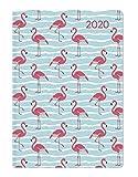 Ladytimer Mini Flamingo 2020 - Taschenplaner - Taschenkalender (8 x 11,5) - Weekly - 144 Seiten - Notizbuch - Terminplaner