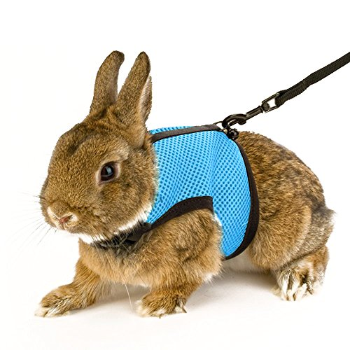Calunce Soft Rabbits Harness with Elastic Leash (Blue 1pcs)