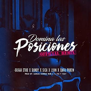Domina las Posiciones (Remix)