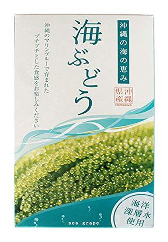 海ぶどう 120g 箱入り×6箱 グローアップコーポレーションF 海洋深層水使用 沖縄の太陽と海に育てたれた新鮮プチプチ食感 うみぶどう