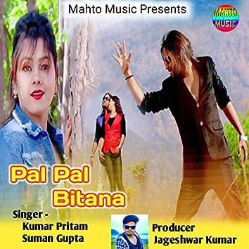 Pal Pal Bitana (Nagpuri)