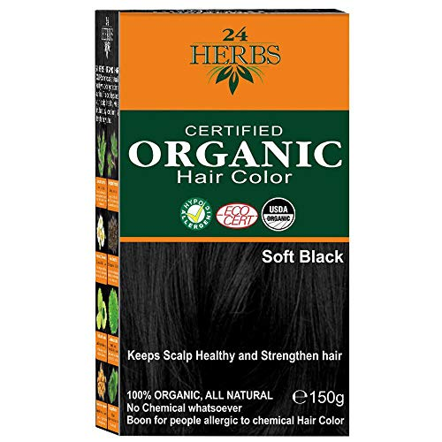 24 Herbs Certified Organic Soft Black Hair Color-150gm