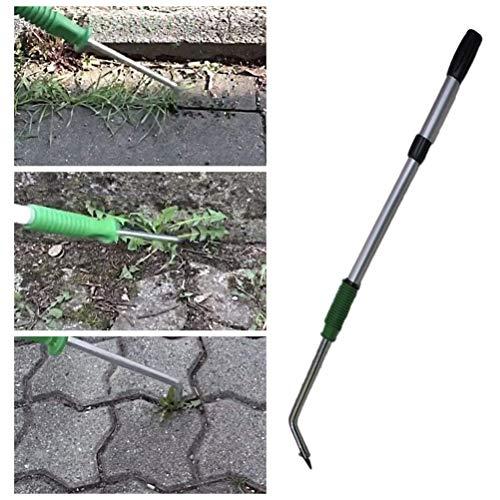 Lespar Unkrautkratzer Fugenkratzer mit Teleskopstiel Handgriff Unkrautstecher Unkrautentferner Gardening Unkrautschneider Rasen Unkrautbekämpfungs Werkzeug