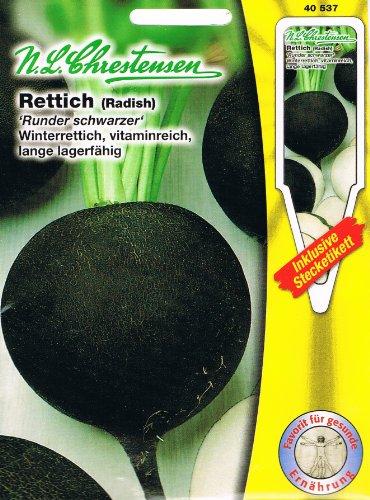 Rettich 'Runder Schwarzer Winterrettich' vitaminreich, lange lagerfähig ( mit Stecketikett)