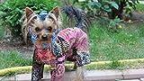 TJKFIO Yorkshire Terrier Costume Cane Pittura Digitale Adulti Bambini Principiantikit 40X50 Cm Senza Cornice