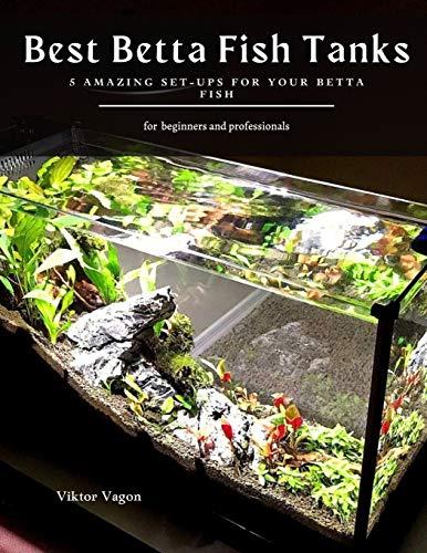Best Betta Fish Tanks: 5 Amazing Set-Ups for Your Betta Fish