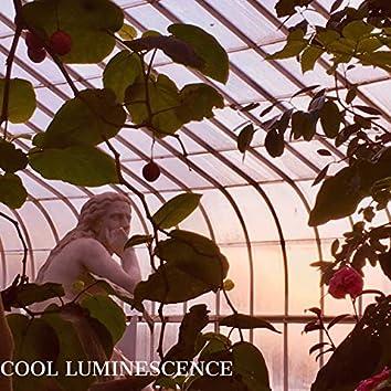 Cool Luminescence