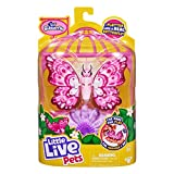 Little Live Pets Lil' Butterfly - Interactive and Comes to Life in Your Hands & Flutters Like A Real Butterfly - Precious (26229)