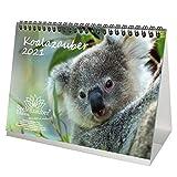 Koalazauber DIN A5 Tischkalender für 2021 Koalabären, Koala - Geschenkset Inhalt: 1x Kalender, 1x Weihnachts- und 1x Grußkarte (insgesamt 3 Teile)
