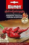 Pieno di sapore italiano Blumen Semi di PEPERONE TRINIDAD SCORPION