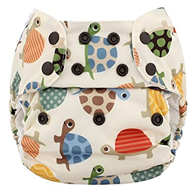 Blueberry Organic One Size Simplex All in One Cloth Diapers, Made in USA (Turtles)