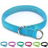 Mycicy Collar de estrangulamiento Reflectante para Perros, Collar de Entrenamiento de Nailon Suave para Perros (1' W x 22' L, Azul)