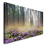 Paul Sinus Art GmbH Wald 120x 50cm Panorama Leinwand Bild