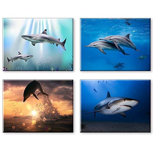 PIY PAINTING Cuadros En Lienzo Animales, Mundo Submarino, Imágenes Impresas En Lienzo Impermeable, Listo para Colgar Fotos para La Decoración De La Sala De Estar Año Nuevo Regalo (30x40cm, 4pics)