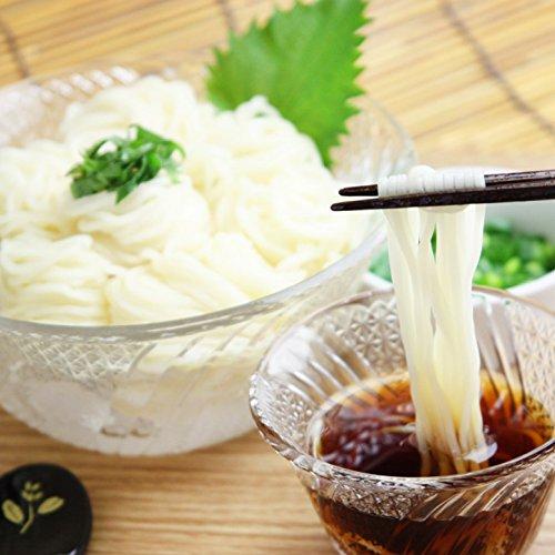 活彩 北海道 稚内 生 ひやむぎ セット 5袋入 冷麦 ヒヤムギ