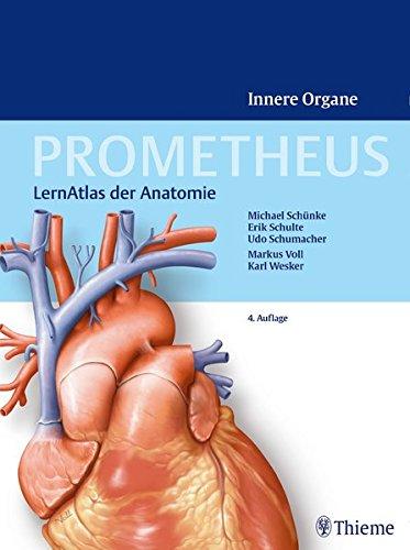 Prometheus - LernAtlas der Anatomie: Innere Organe