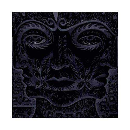 Tool's Album Cover - 10,000 Days Canvas Poster Bedroom Decor Sports Landscape Office Room Decor Gift 28×28inch(70×70cm) Unframe-style1