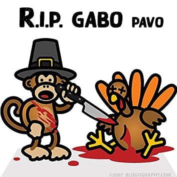 RIP Gabo Pavo (feat. Hebreo)